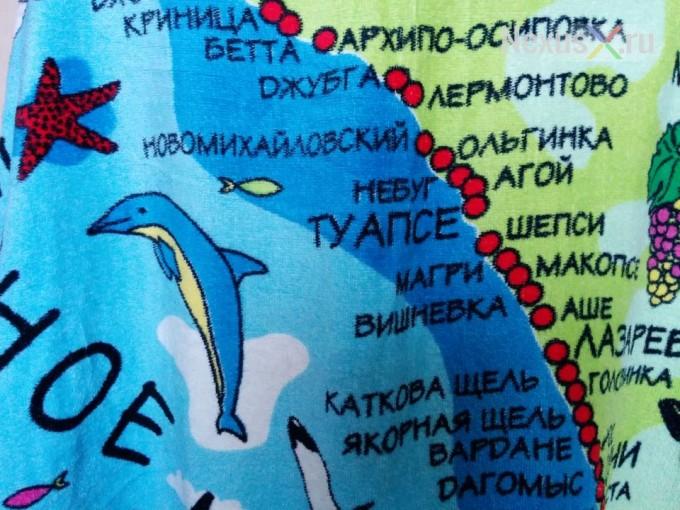 nexus 5 dolphin